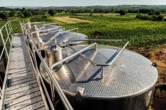 vino-kalem-velika-drenova-006