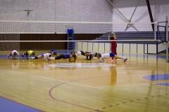 sportski tereni hala sportova 3