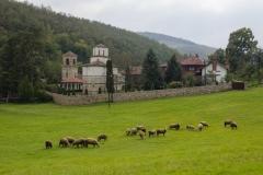 manastir veluce 2