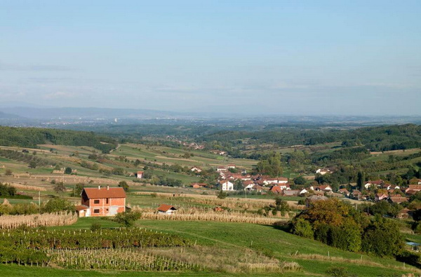 vinarija-milosavljevic-1