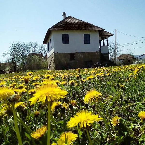 odmor u selu, srpska rakija, vesela fabrika